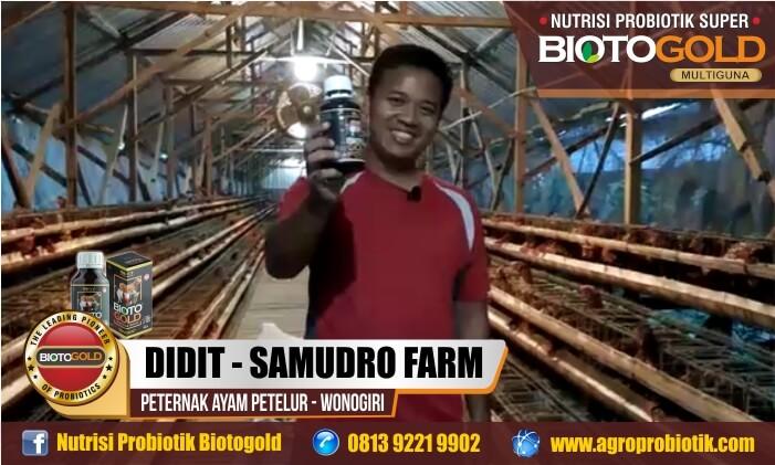 biotogold nutrisi ayam layer