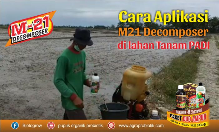 aplikasi m21 decomposer