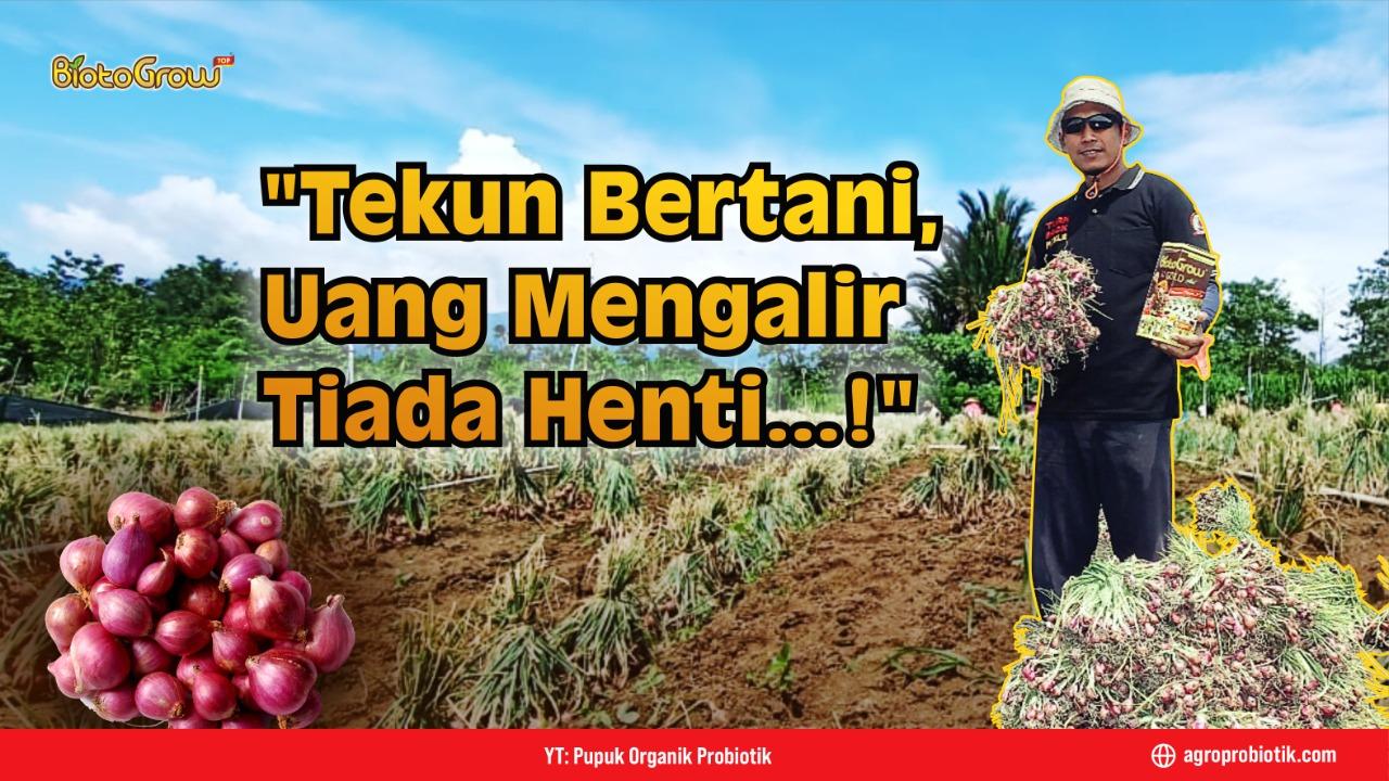 Tekun Bertani, Uang Mengalir Tiada Henti !